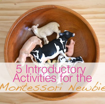 Make Like a Montessori Mama: Part 3 – Animal Activities
