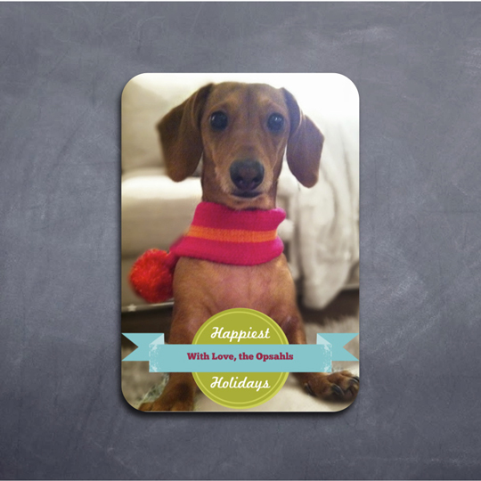 Dog Christmas Cards 2020 Luxury Christmas Cards 2020 Puppies | Hypwtv.forumnewyear.site