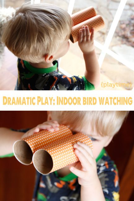 Kid Activity: Become a Birder for a Day