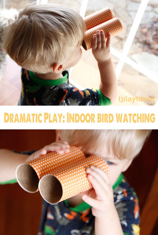 indoorbirdwatching