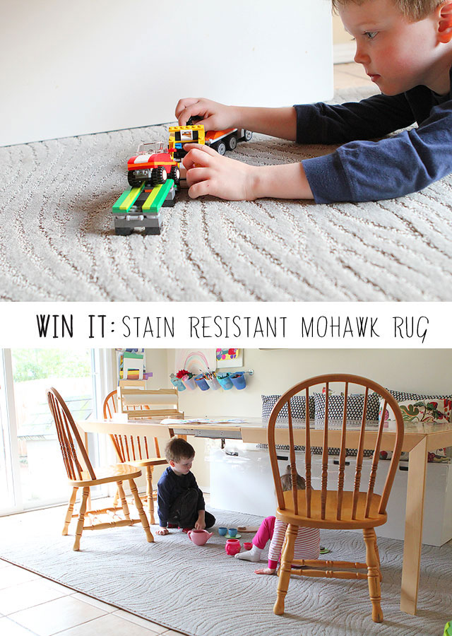 in a stain resistant rug