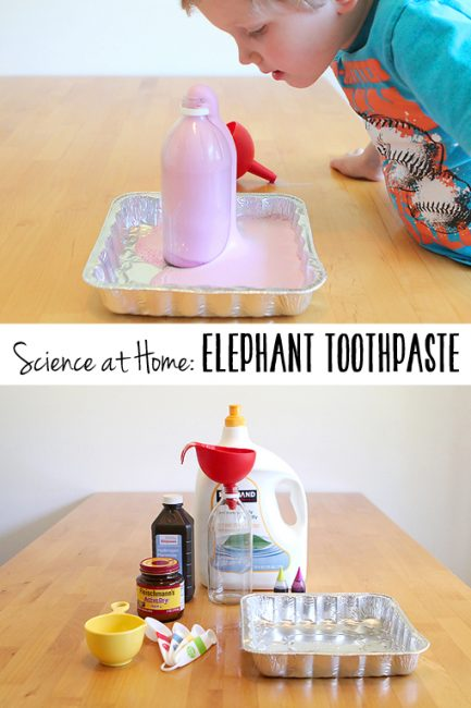More STEM Skill Activities: Elephant Toothpaste Experiment