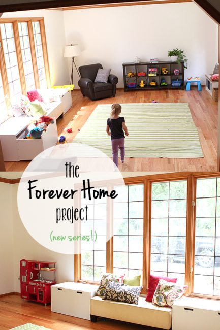The Forever Home Project: A New MPMK Series