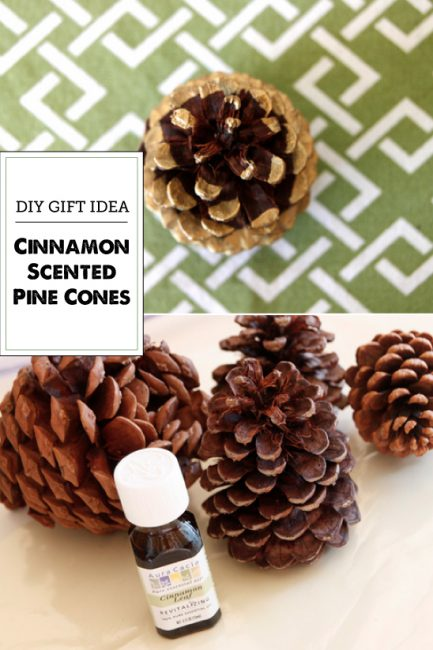DIY Painted Cinnamon Pine Cones