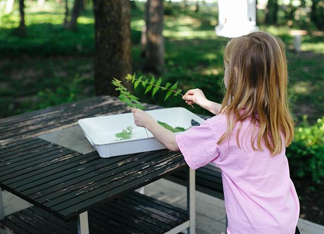 Sun Print Art Project Modern Parents Messy Kids