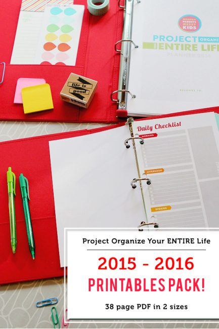 2015 Project Organize Your ENTIRE Life Printables Now for Sale!