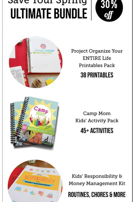 2016 Project Organize Your ENTIRE Life Printables NOW Available!