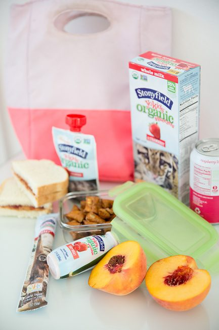 Must-Try Lunch Box and After School Snack Hacks