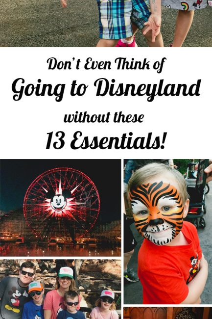 Don't Even Think About Heading to Disneyland without these 13 Things
